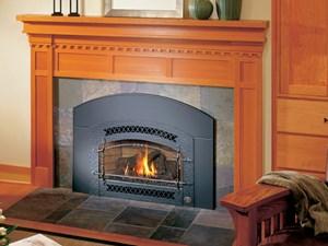 Fireplace Extrodinair Gas Insert