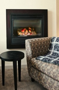 Fireplace Type Identification - Waldorf MD - Tri County Hearth and Patio Center