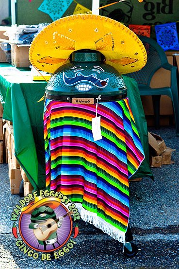 Green egg in sombrero and poncho