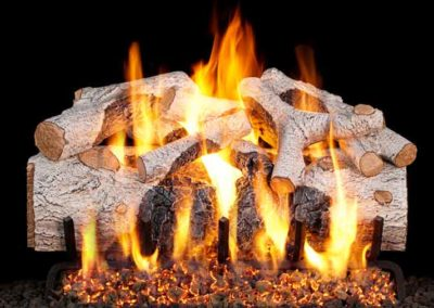 Peterson Vented Gas Log Birch